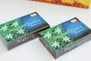 Darshan Night Queen kegeltjes